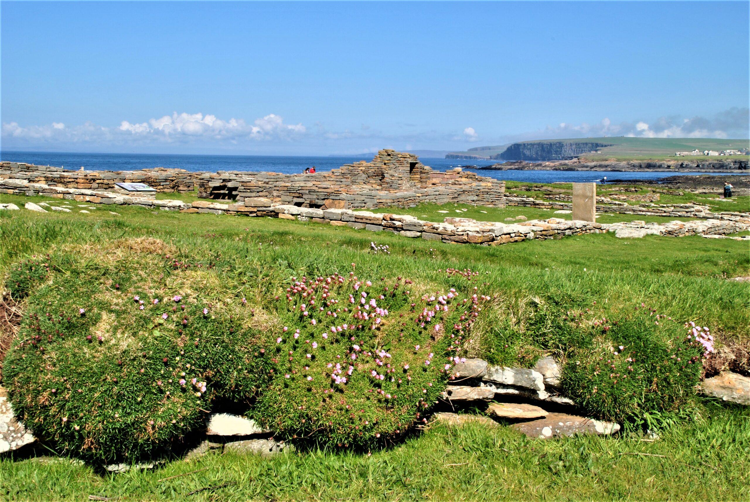 Erlebnis Orkney Inseln